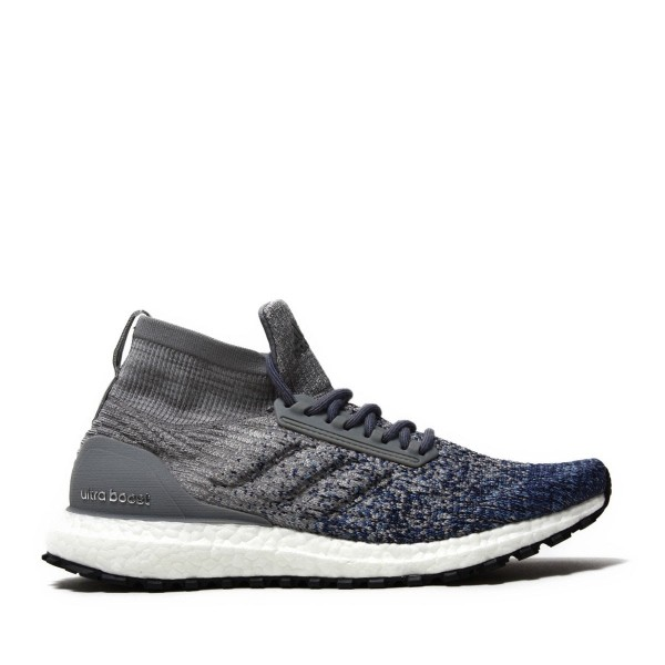 adidas Originals Ultraboost All Terrain Grau/Grau/Blau bb6128