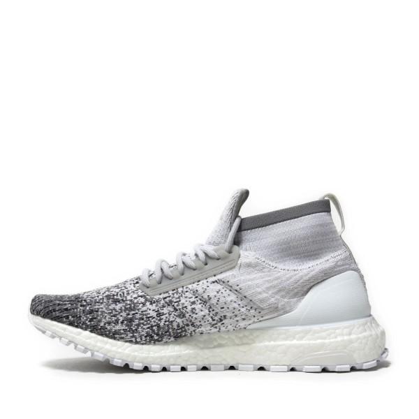 adidas Originals Ultraboost All Terrain Rc Weiß/Grau/Grau db2042